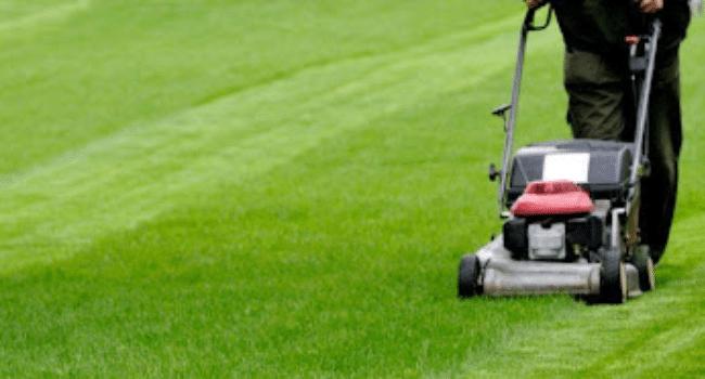 Grounds maintenance west midlands