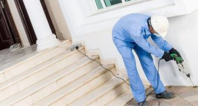 Hire Local Pest Control for Termite Treatment