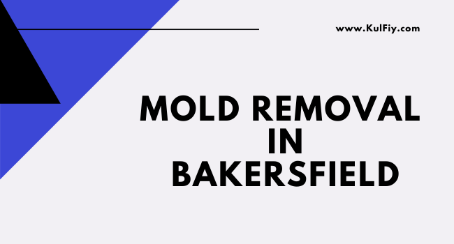 Mold Removal in Bakersfield