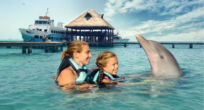 Swim with Dolphins in Isla Mujeres